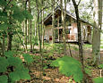 Keldy Forest Log Cabins North Yorkshire